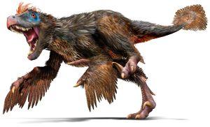 Velociraptor wie er aussehen sollte.