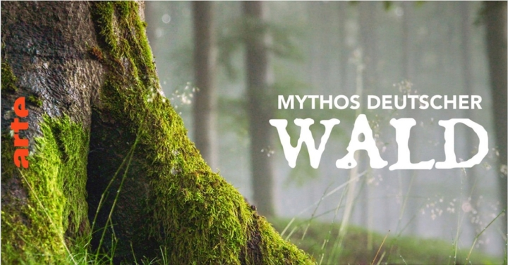 Mythos Deutscher Wald aufArte